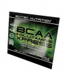 Scitec Nutrition BCAA + Glutamine Xpress, 12 гр